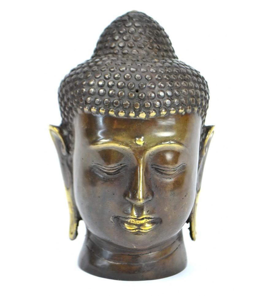 Testa di Buddha_ArchiMode
